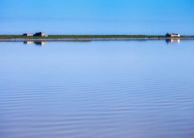 Paisaje acuático en Doñana